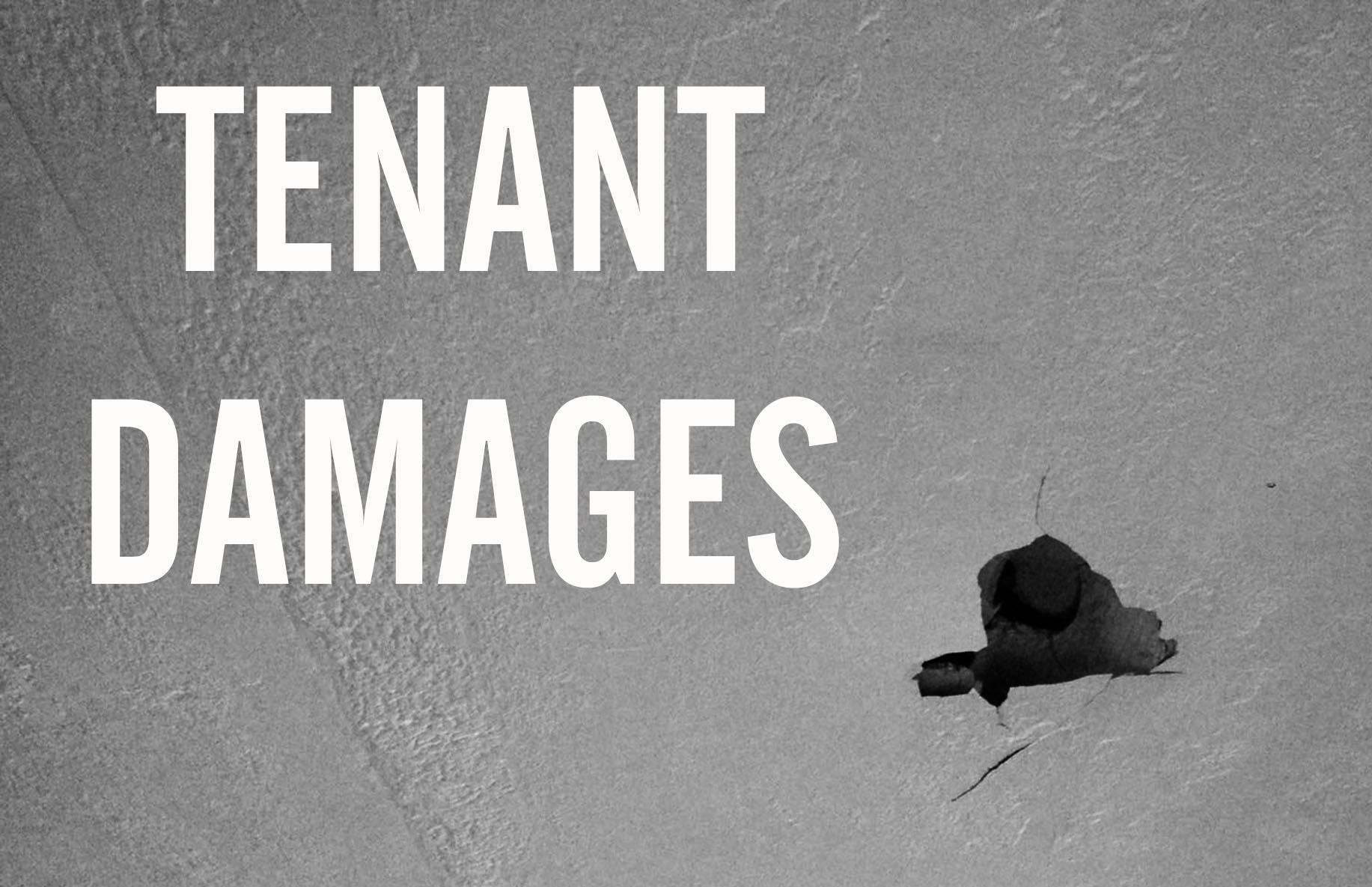 TENANT DAMAGES: Serving Justice to the Damage-Prone