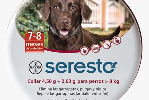 home_seresto_perros[1]