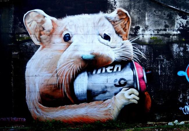 Voor ongelooflijke collectie Street Art moet je in Wynwood zijn