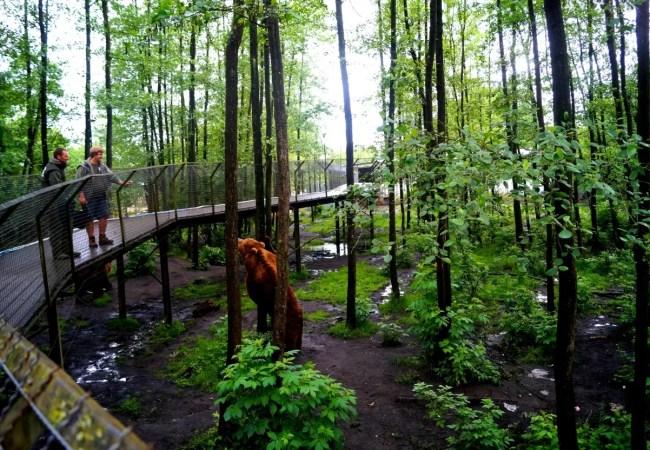Zomerideetjes: Dagje Olmense Zoo