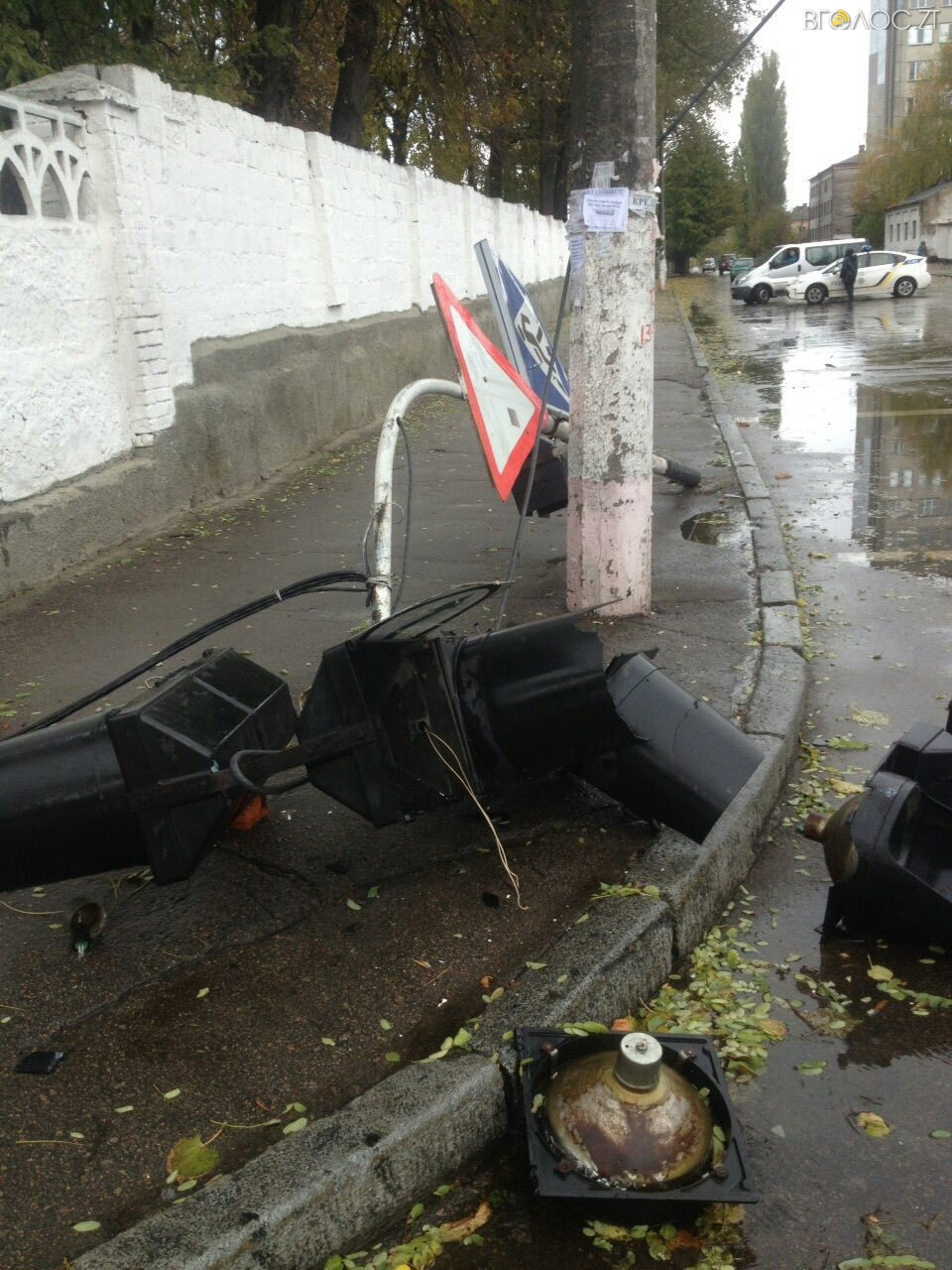 В Житомире дерево упало на дорогу и повалило светофор 8