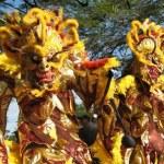 Llega El Carnaval Dominicano En Las Diferentes Provincias