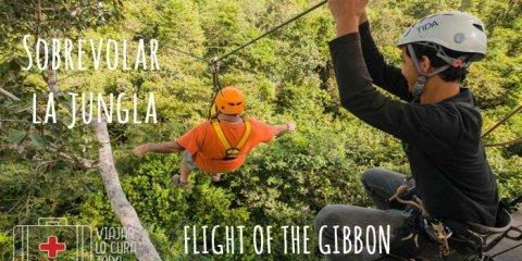 ¿Te animas a sobrevolar la jungla?