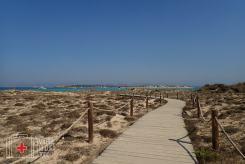 Pasarelas de acceso a la playa