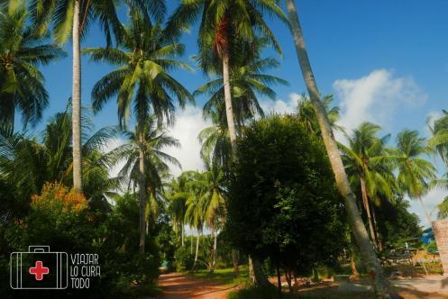 Loola Adventure Resort