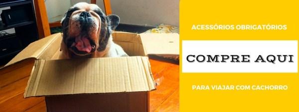 itens obrigatórios para viajar com cachorro de carro