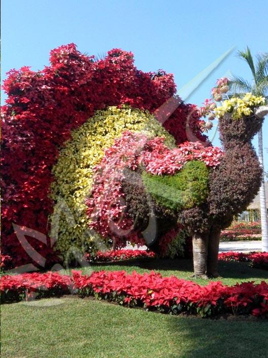 Jardines de mexico y cuernavaca 1 dia viajes mexica for Casa y jardin mexico