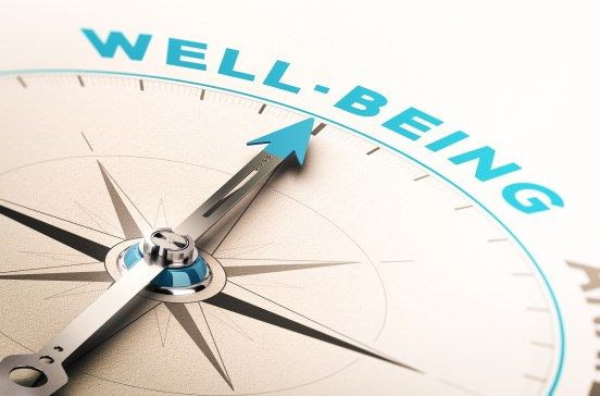 Well-being or wellness