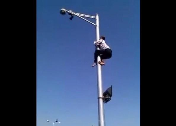PERLES-un-policier-grimpe-sur-un-lampadaire-pour-sauver-un-oiseau