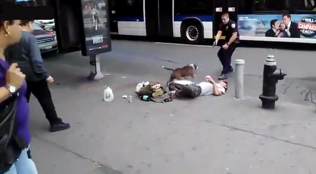 un policier du nypd abat un chien qui l attaque videos de police com vid os et reportages. Black Bedroom Furniture Sets. Home Design Ideas