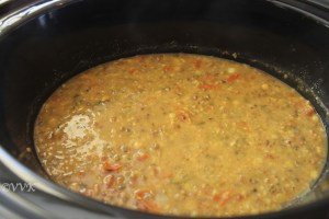 Slow Cooker Panch Mel Dal