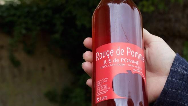 Normandie Frankreich Cidre Apfelplantage