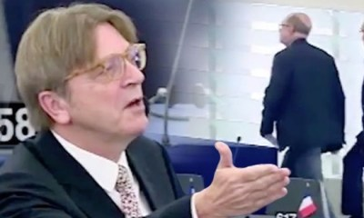 guy-verhofstadt-poland-european-union-879975-590x330