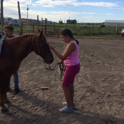 Communicating with relative, the horse, and preparing to ride