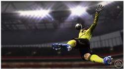 FIFA 11 Cech