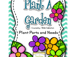 plant_parts_and_needs_freebie
