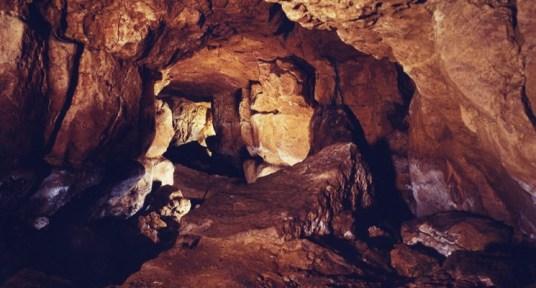 Cueva de Altamira http://museodealtamira.mcu.es/