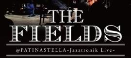 thefields1115-722x1024