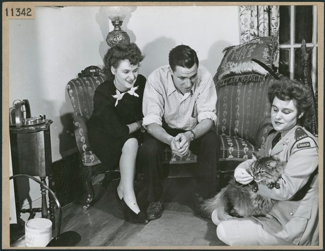 A member of the Canadian Women's Army Corps feeds a treat to a cat as a couple seated on nearby loveseat watch /