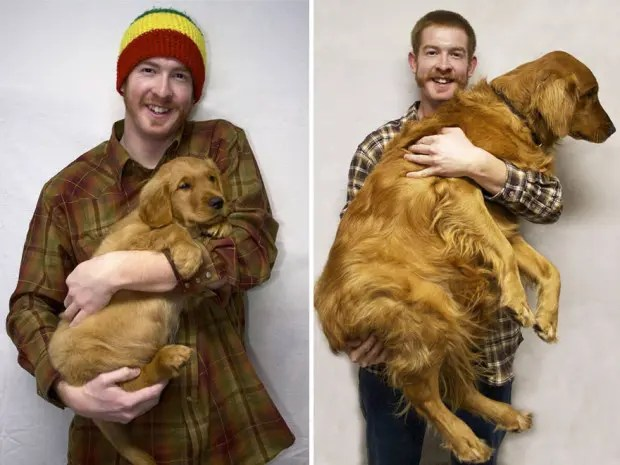 XX-before-and-after-dogs-growing-up-6__880