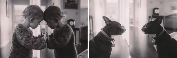 I-Photograph-My-Daughter-And-Dog-In-The-Same-Setting17__880