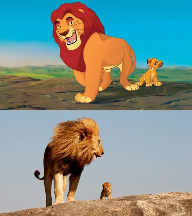 rey-leon-vida-real-2