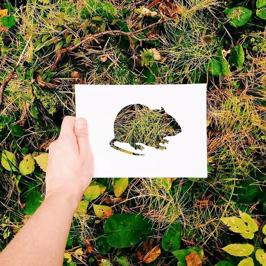 animals-silhouettes-natural-landscapes-nikolai-tolstyh-19