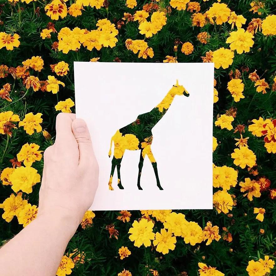 animals-silhouettes-natural-landscapes-nikolai-tolstyh-29