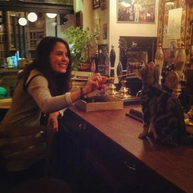 bar de gatos 7