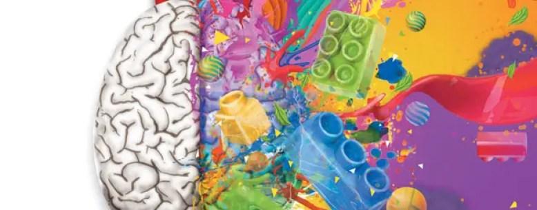 cerebro-derecho-cerebro