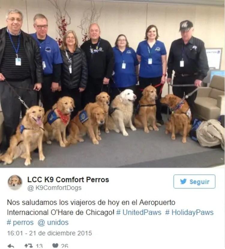utilizan-perros-para-calmar-pasajeros-nerviosos14