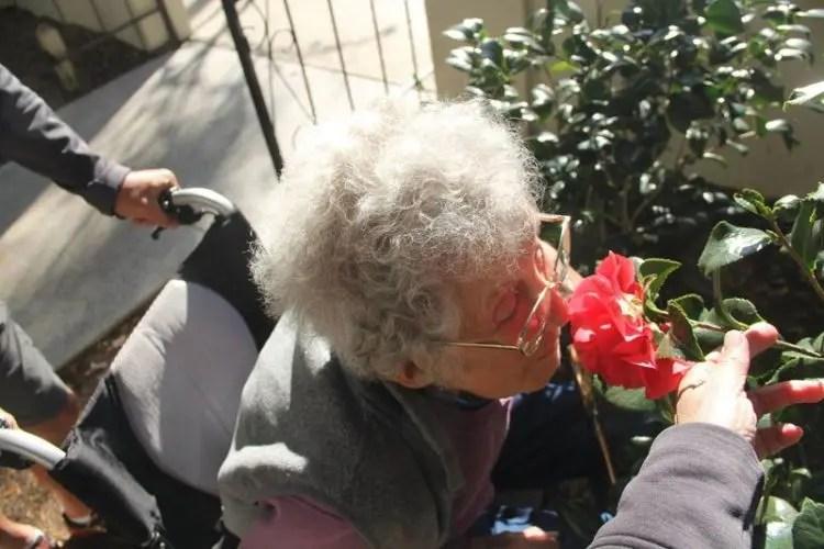 muere-norma-anciana-con-cancer15