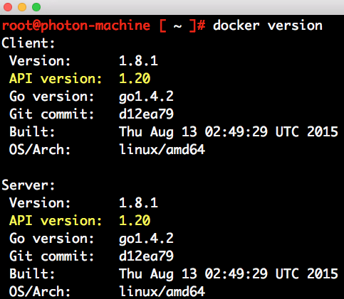 test-driving-photon-controller-docker-swarm-5