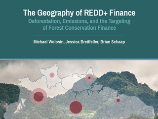 The Geography of REDD+ Finance