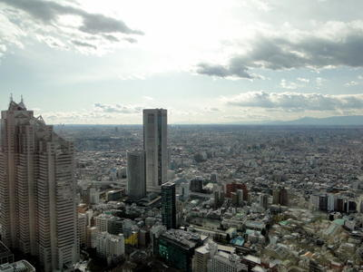 Japan - Tokyo Metropolitan Government Offices (7).JPG