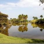 Fairchild Tropical Botanical Gardens : Miami