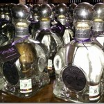 Tequila Daytrip Tour from Guadalajara : Mexico