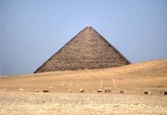 Wuestentour Pharaonen