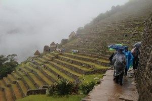 Terraces were their main system for  agriculture