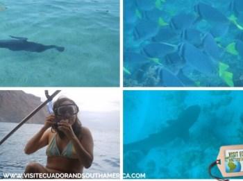 Galapagos Cris Carpio 2007 (225)