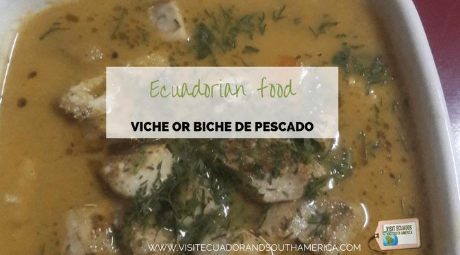 ecuadorian-food-viche-or-biche-de-pescado