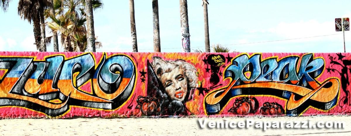 Let Venice Inspire your next Piece at the Famous Venice Art Walls!