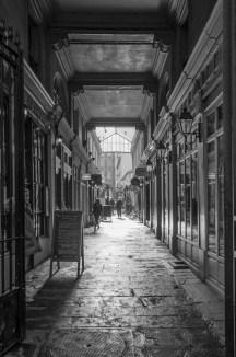 Paris-8718-2