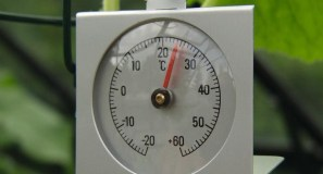 Thermoter15x19