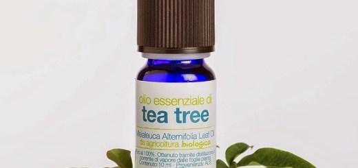 olio_essenziale_tea_tree1