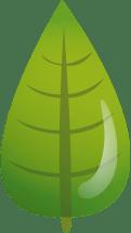 permacultura - viviendo gota a gota