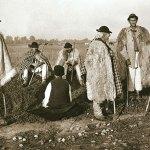 Ciobani cei care arendau munţii plăteau în bani sau în oi
