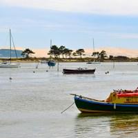 Aquitania: mangiare ostriche a piedi nudi nella sabbia
