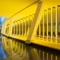 Fondazione Louis Vuitton: al via le mostre