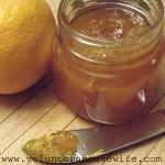 Canning- Homemade Orange Marmalade